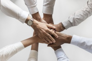team development - forming